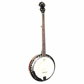 Barnes & Mullins BJ300 banjo