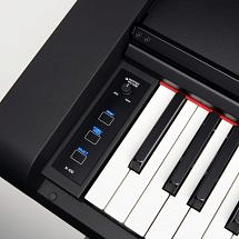 Digital Keyboard (Great Package Deals Available-Please Call!)